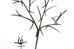 77-tree2_w-bird-800x600